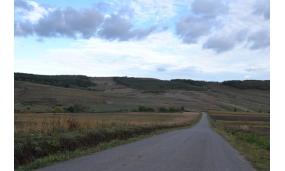 Asfaltare drum Holm-Pancesti